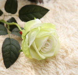 Rose , Artificial Flower, Light Green. Material: Velvet . A bunch(includes 10 heads.Babiwa online store since 2002 ,free shipping to worldwide area) .