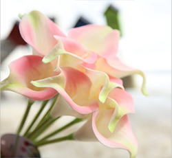 Calla Lily Bridal Wedding Bouquet , Pink Green. Material: Latex . A bunch(includes 10 heads). Babiwa online store since 2002 ,free shipping to worldwide area) .