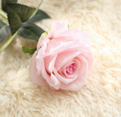 Rose , Artificial Flower, Pale Pink. Material: Velvet . A bunch(includes 10 heads.Babiwa online store since 2002 ,free shipping to worldwide area) .